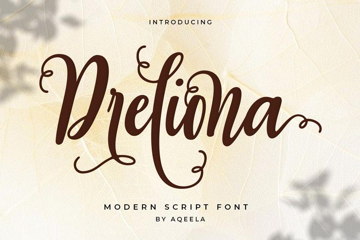 Bundles Creative Fonts for New Projects - 11 96 -