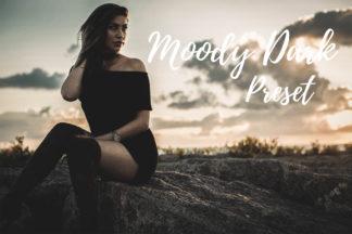 Desktop Lightroom Presets - CF Moody Dark -