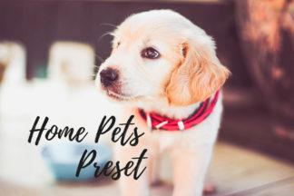 Desktop Lightroom Presets - CF Home Pets -