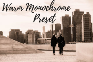 Free Lightroom Presets - CF Warm Monochrome -