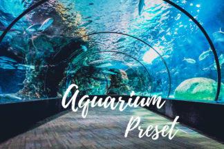 Desktop Lightroom Presets - CF Aquarium -