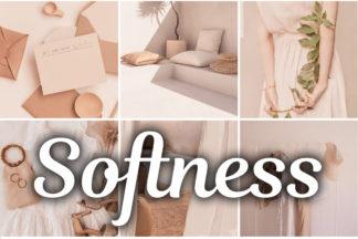 Free Lightroom Presets - Softness mobile lightroom presets -