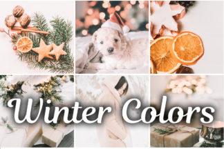 $1 Lightroom Preset Deals - Winter Colors mobile lightroom presets -