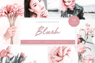 White Lightroom Presets - Blush LR -