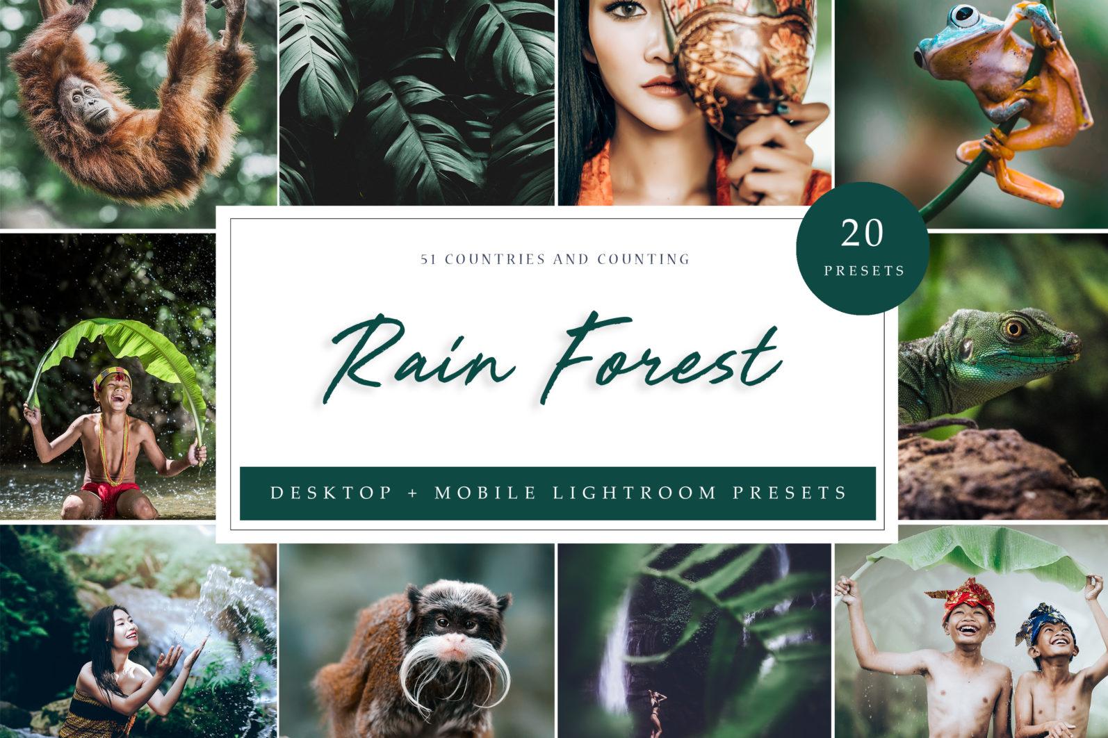 10 x Rain Forest Lightroom Presets | Green Lightroom Presets | Nature Presets - Rain Forest LR scaled -