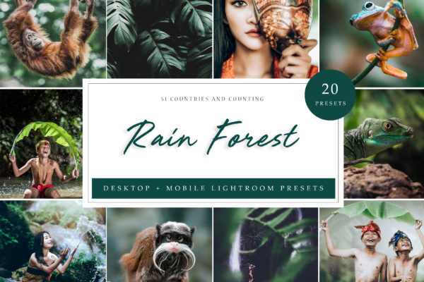 """<span style=""""display: none"""">Marketplace for Fonts, SVG files, Lightroom Presets and more</span> - Rain Forest LR -"""