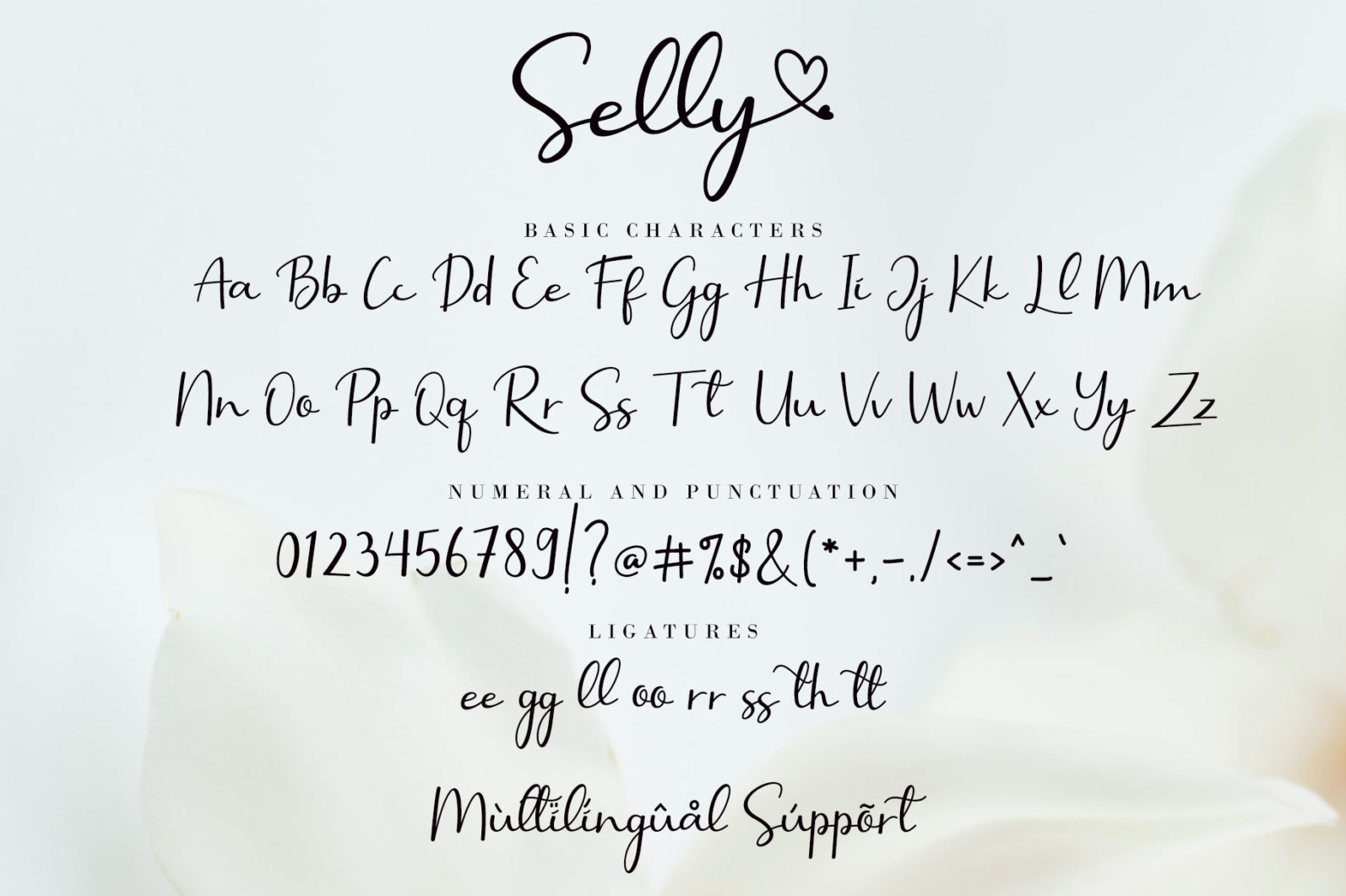 Selly Calligraphy - Selly Calligraphy Preview 10 -