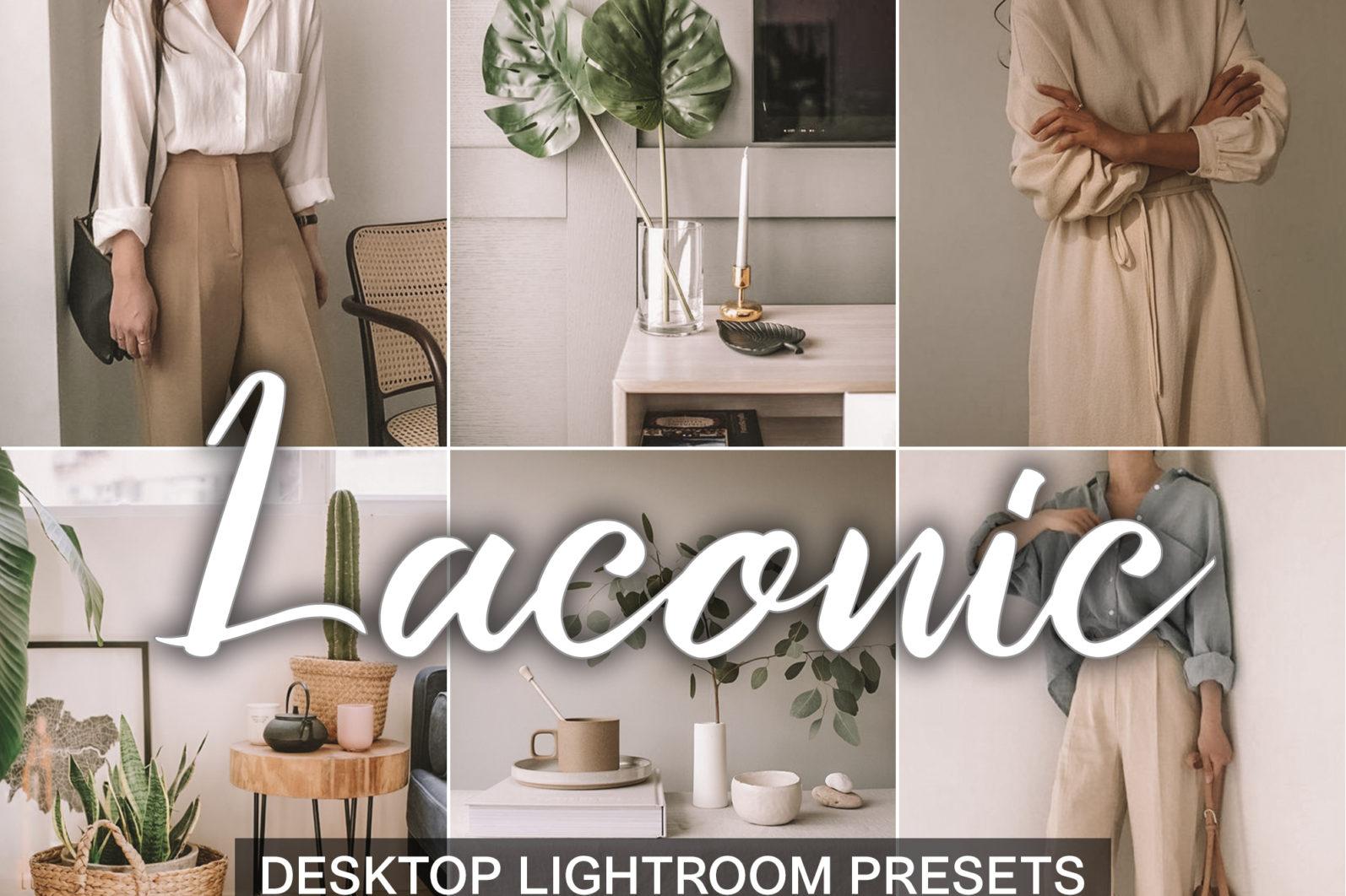 15 Mobile & Desktop Presets LACONIC - laconic lightroom presets desktop cover product -