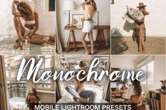 Lifestyle Lightroom Presets - lightroom mobile presets Monochrome -