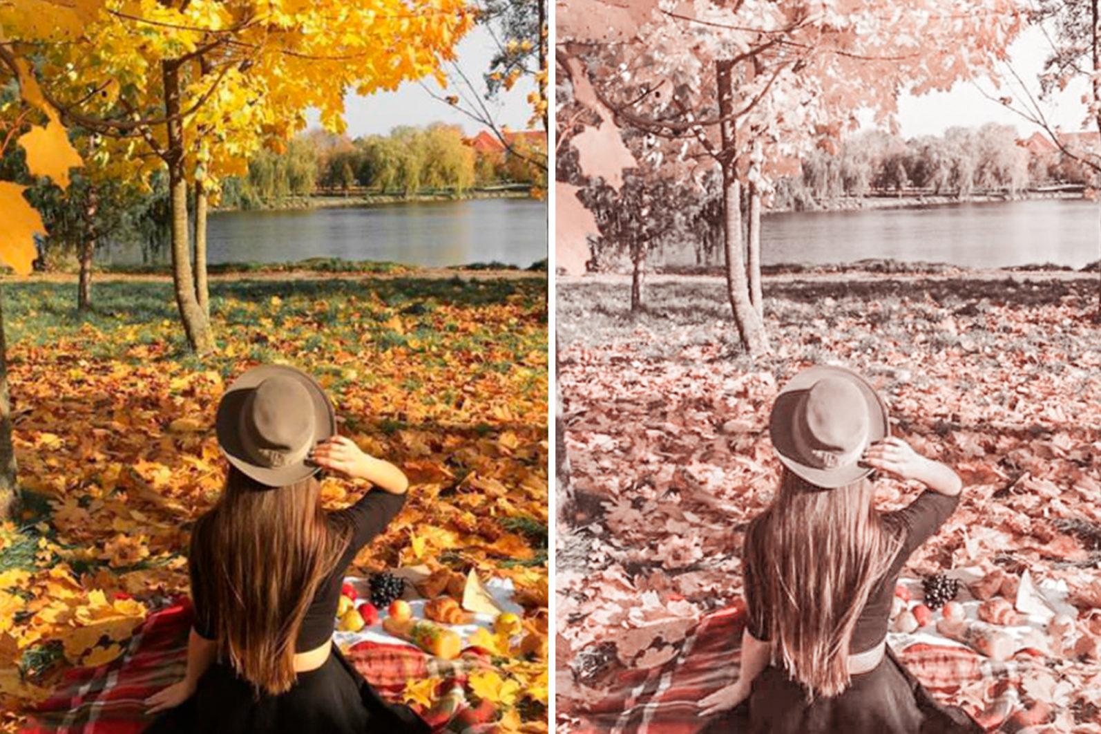 15 Mobile & Desktop Lightroom Presets FALL COLORS - Fall Colors mobile lightroom presets page6 -