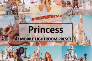 Spring Lightroom Presets - disneyprincess -