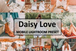 Spring Lightroom Presets - Daisy Love -