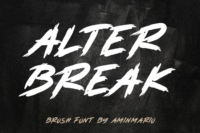 Brush Font Bundle - 45 Fonts - COVER alterbreak -