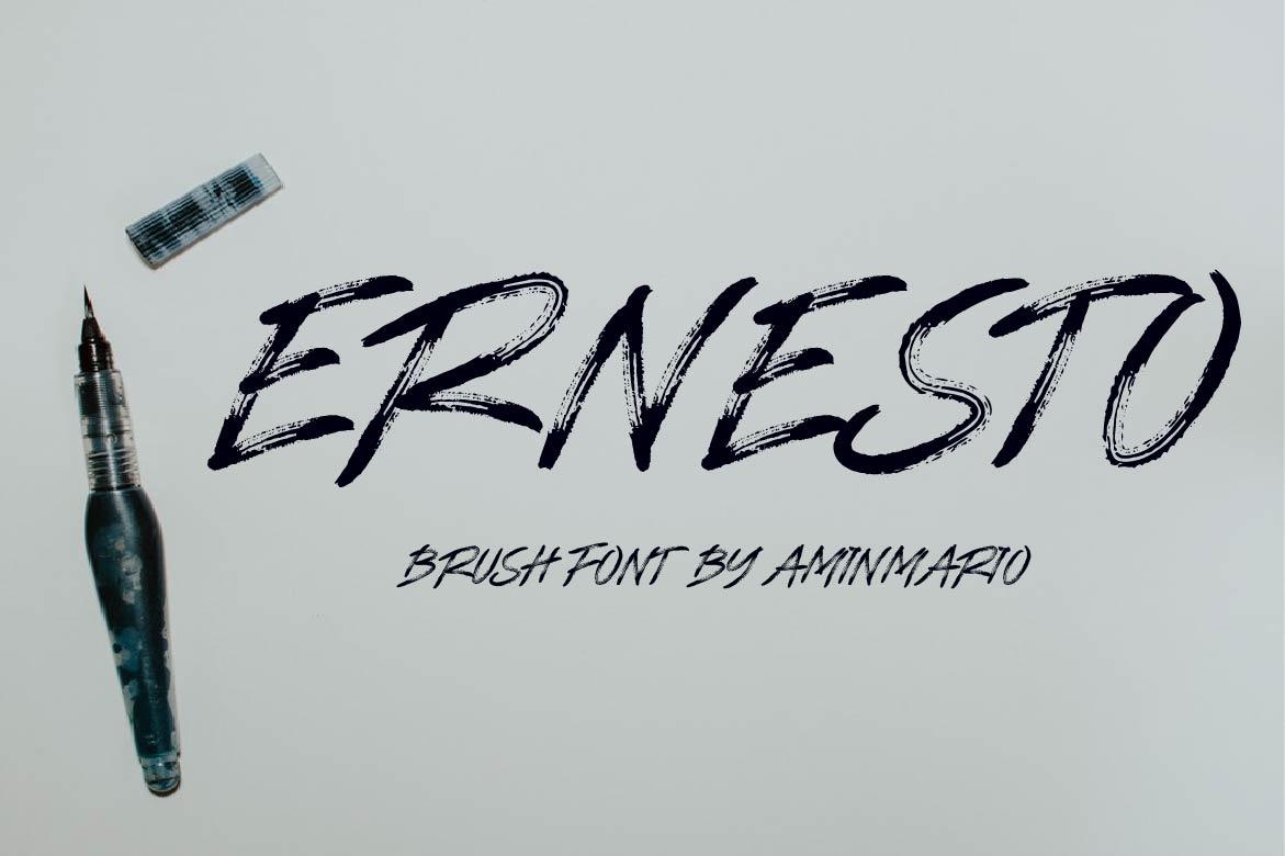 Brush Font Bundle - 45 Fonts - COVER ERNESTO -