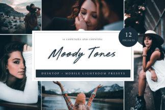 Lifestyle Lightroom Presets - Moody Tones LR -
