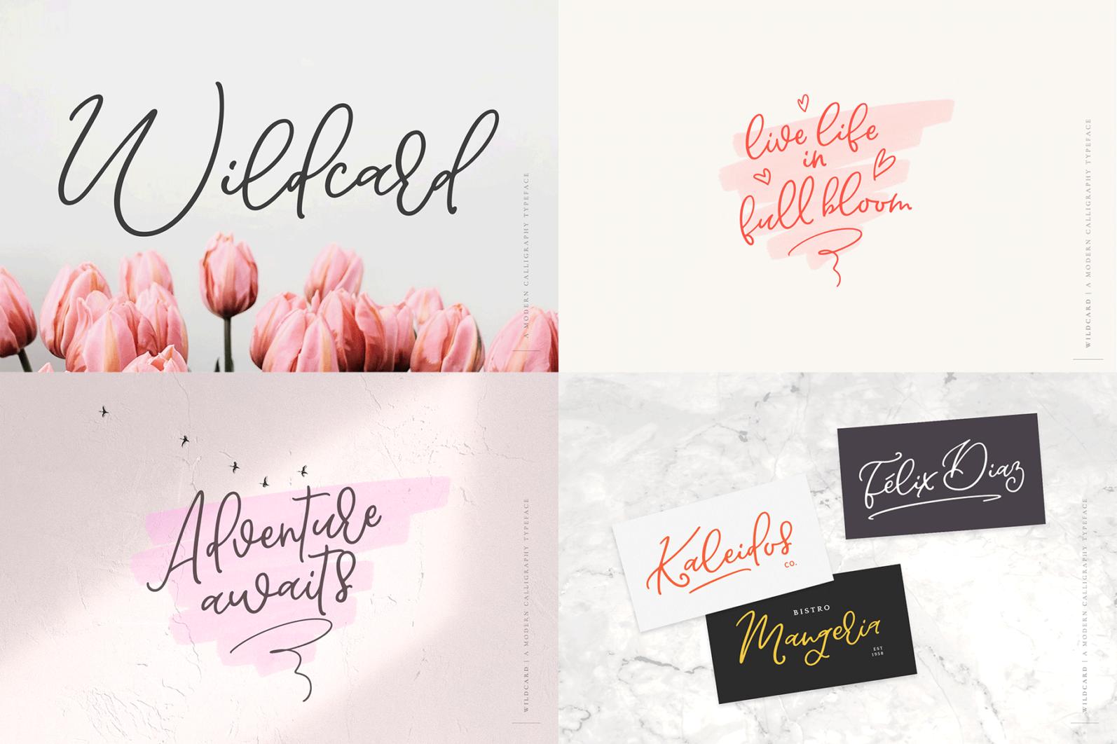 The Hand Lettered Font Bundle - Bundlemedia Wildcard -