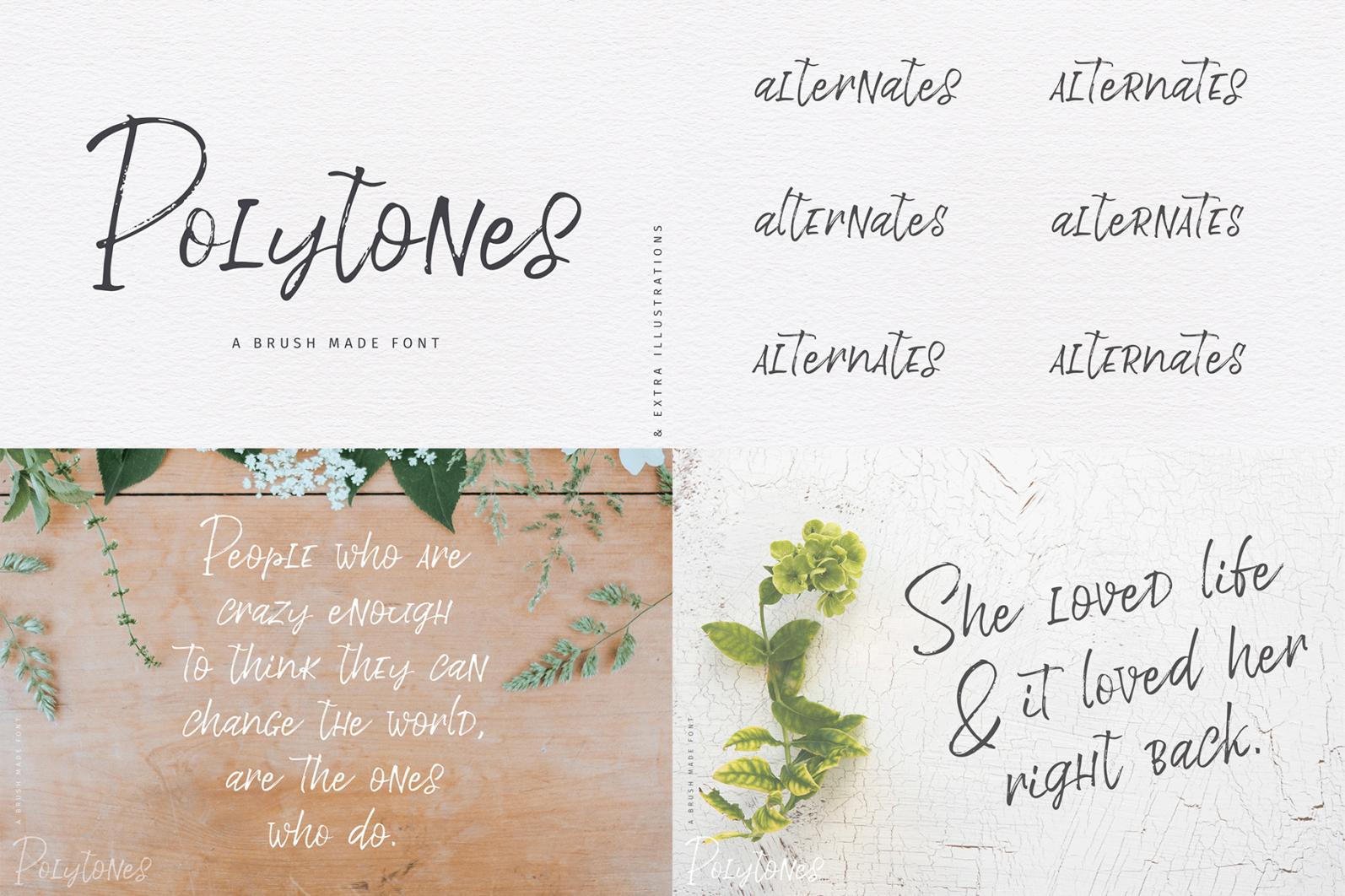 The Hand Lettered Font Bundle - Bundlemedia Polytones -