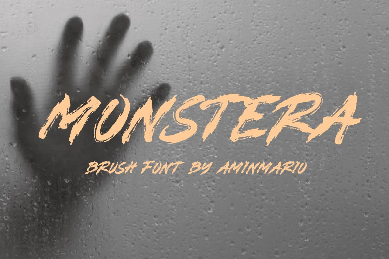 Brush Font Bundle - 45 Fonts - COVER MONSTERA -