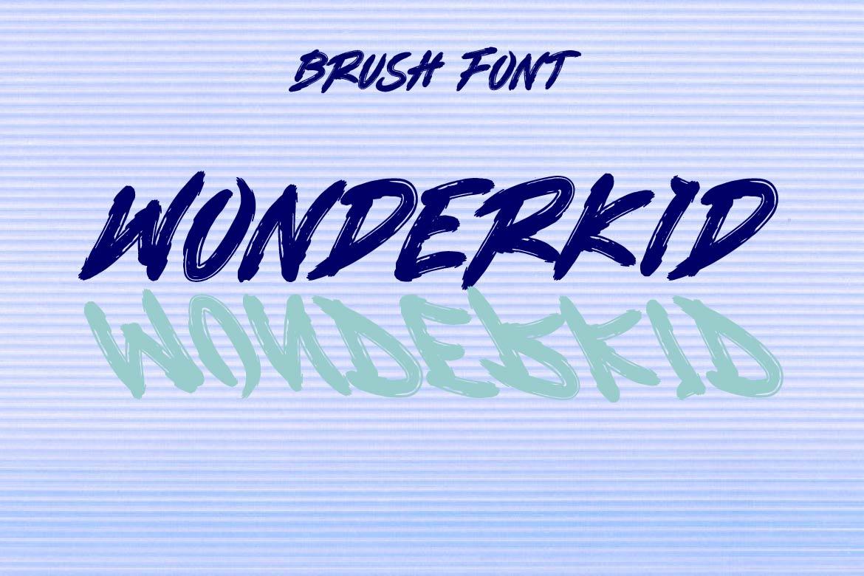 Brush Font Bundle - 45 Fonts - COVER WONDERKID -