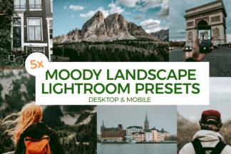 Forest Lightroom Presets - ML00 -