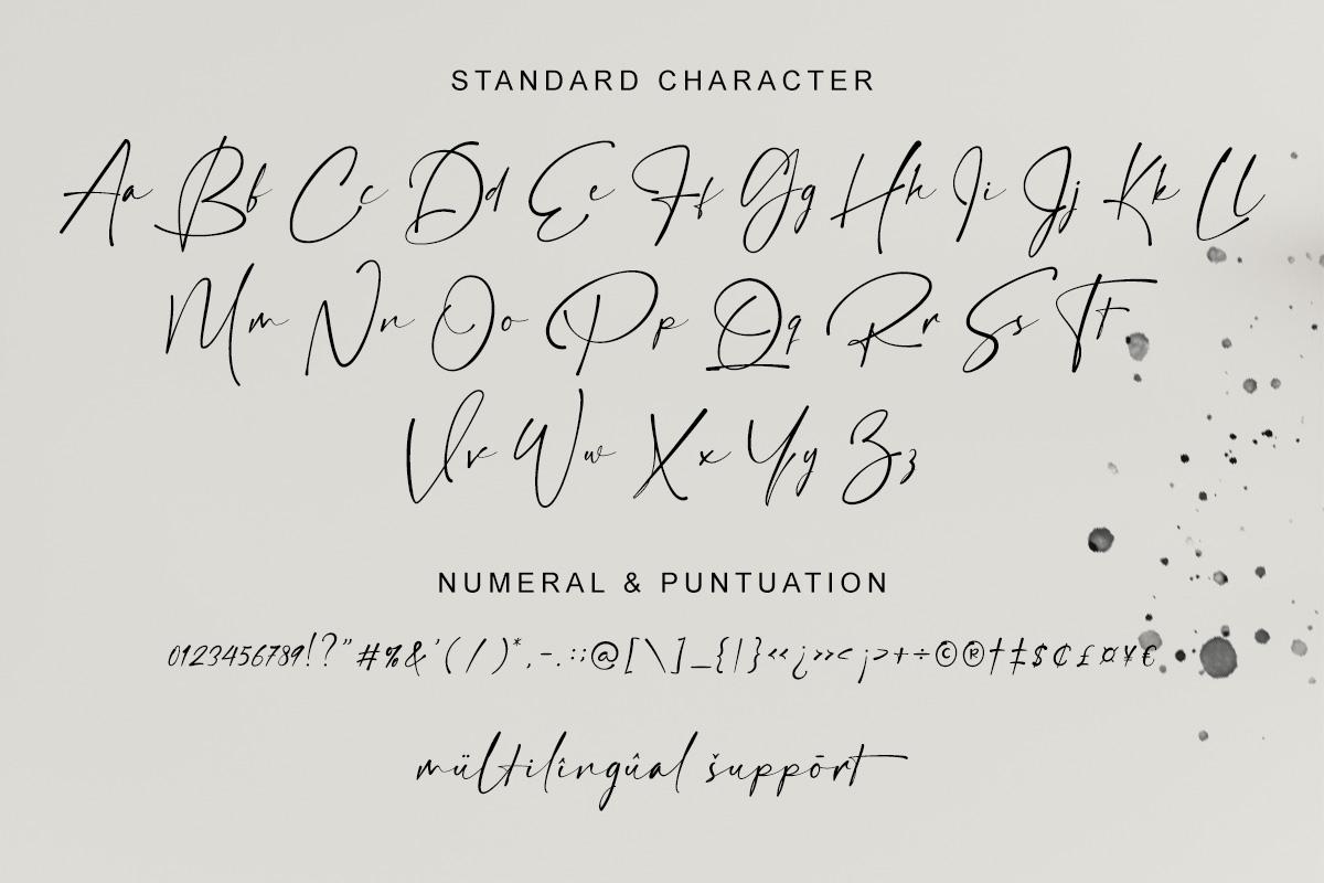 Hamiltone Signature Font - 6 156 -