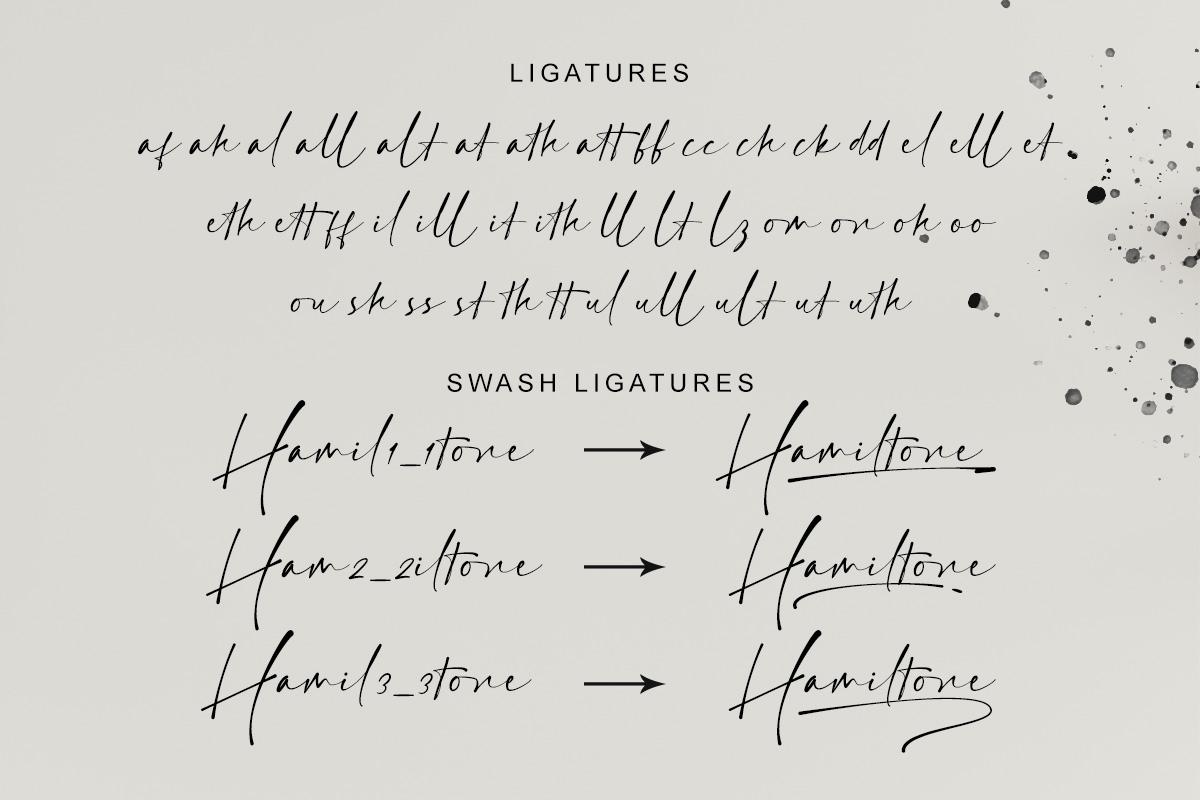 Hamiltone Signature Font - 8 75 -