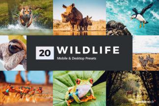 Wildlife Lightroom Presets - 01 23 -