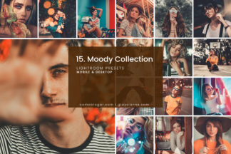 White Lightroom Presets - 15.MOODYCOLLECTION 01 -