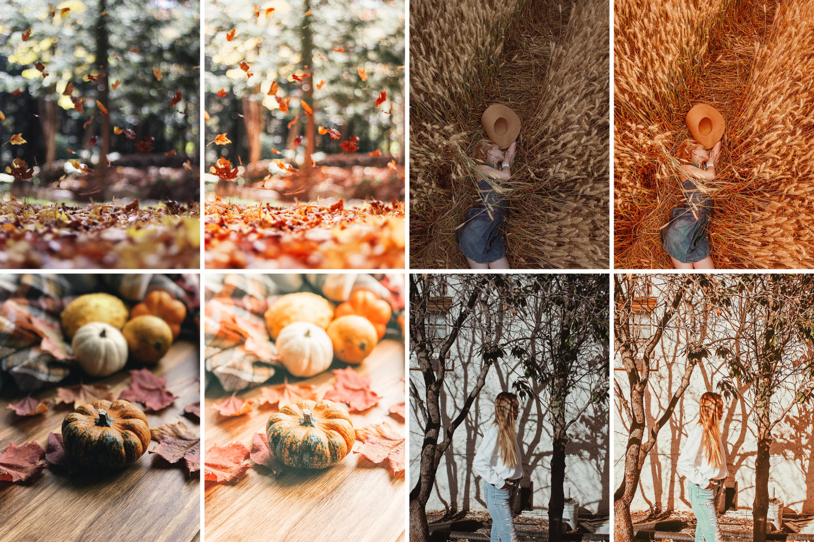 19. Winter & Fall - 19.WINTERFALL 04 -