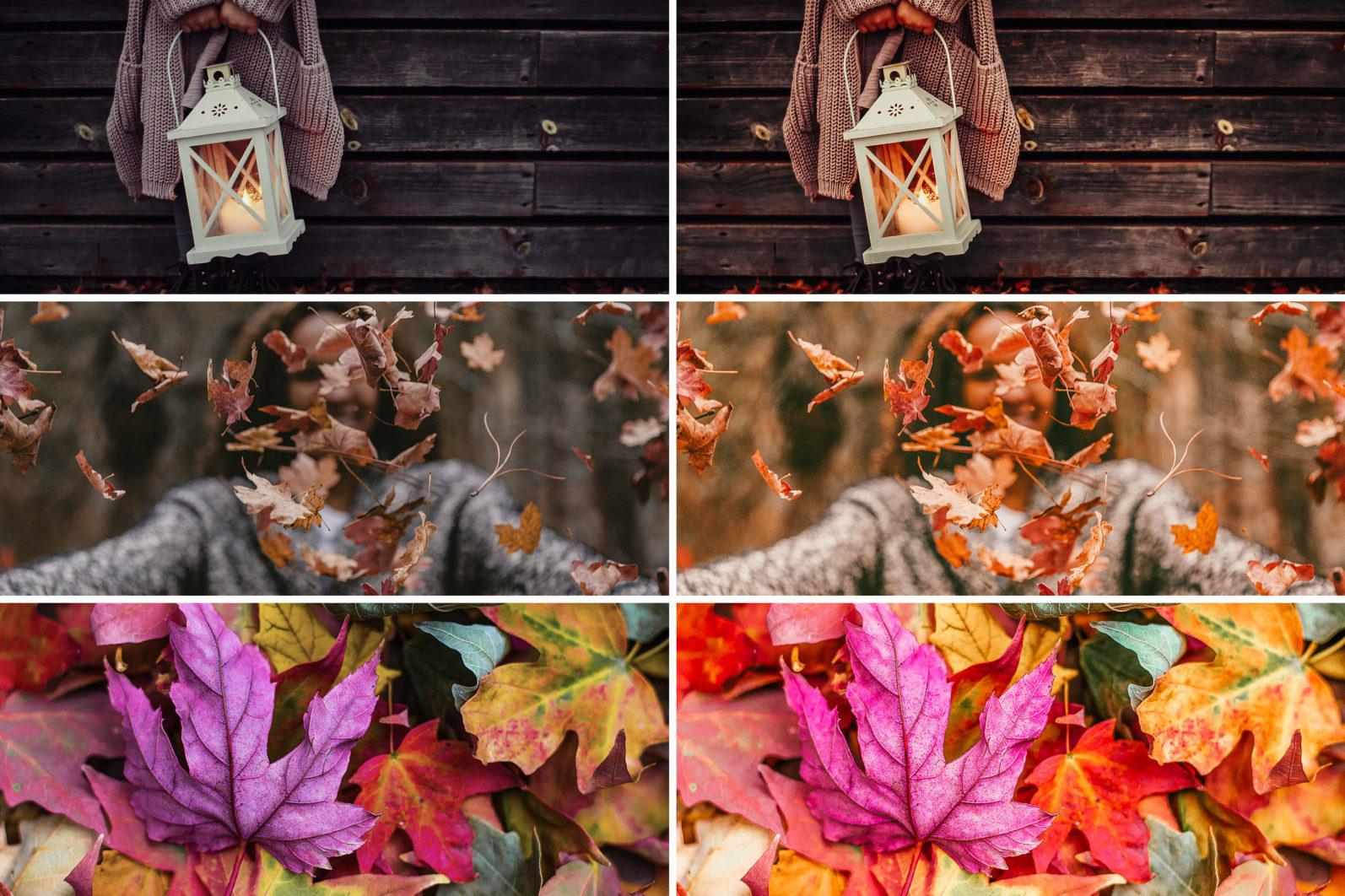 19. Winter & Fall - 19.WINTERFALL 08 -