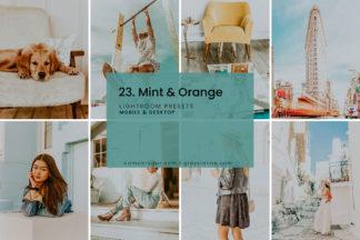 Minimalistic Lightroom Presets - 23.MINTORANGE 01 -