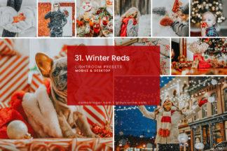 Clean White Lightroom Presets - 31.WINTERREDS 1 -
