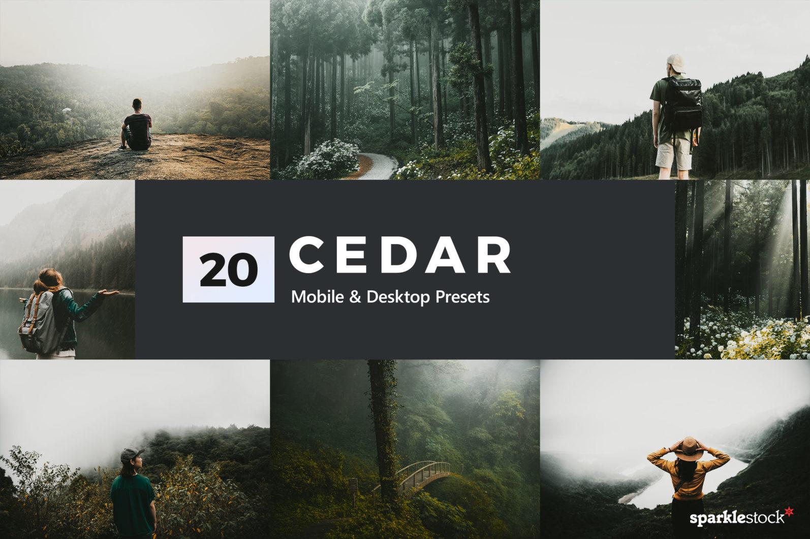 20 Cedar Lightroom Presets and LUTs - 01 21 -