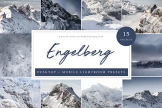 Winter Lightroom Presets - Engelberg Desktop -