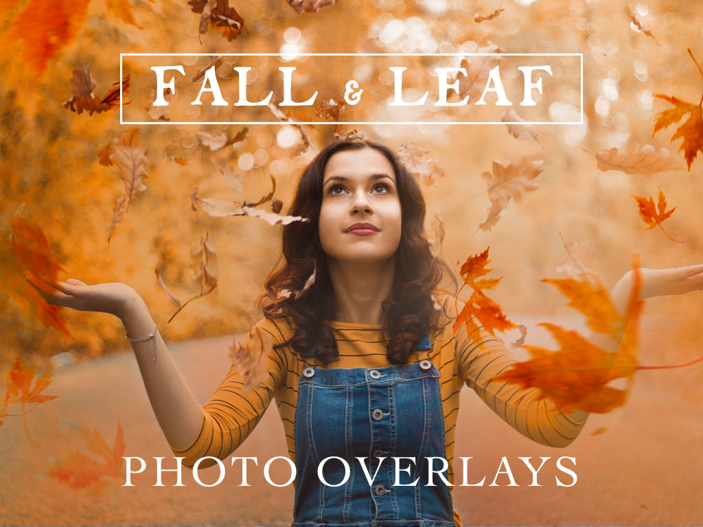 70 Natural Falling Autumn Leaves Photoshop Overlays - autumn falling leaves photoshop photography overlays 1 -