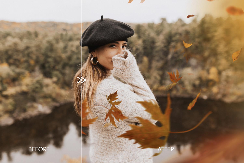 290+ OVERLAY BUNDLE - Film Dust, Fog, Snow, Rain, Fireflies, Fall Leaves, Skies - autumn falling leaves photoshop photography overlays 2 -