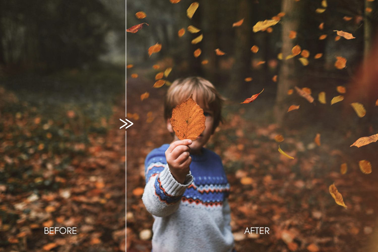 70 Natural Falling Autumn Leaves Photoshop Overlays - autumn falling leaves photoshop photography overlays 3 -