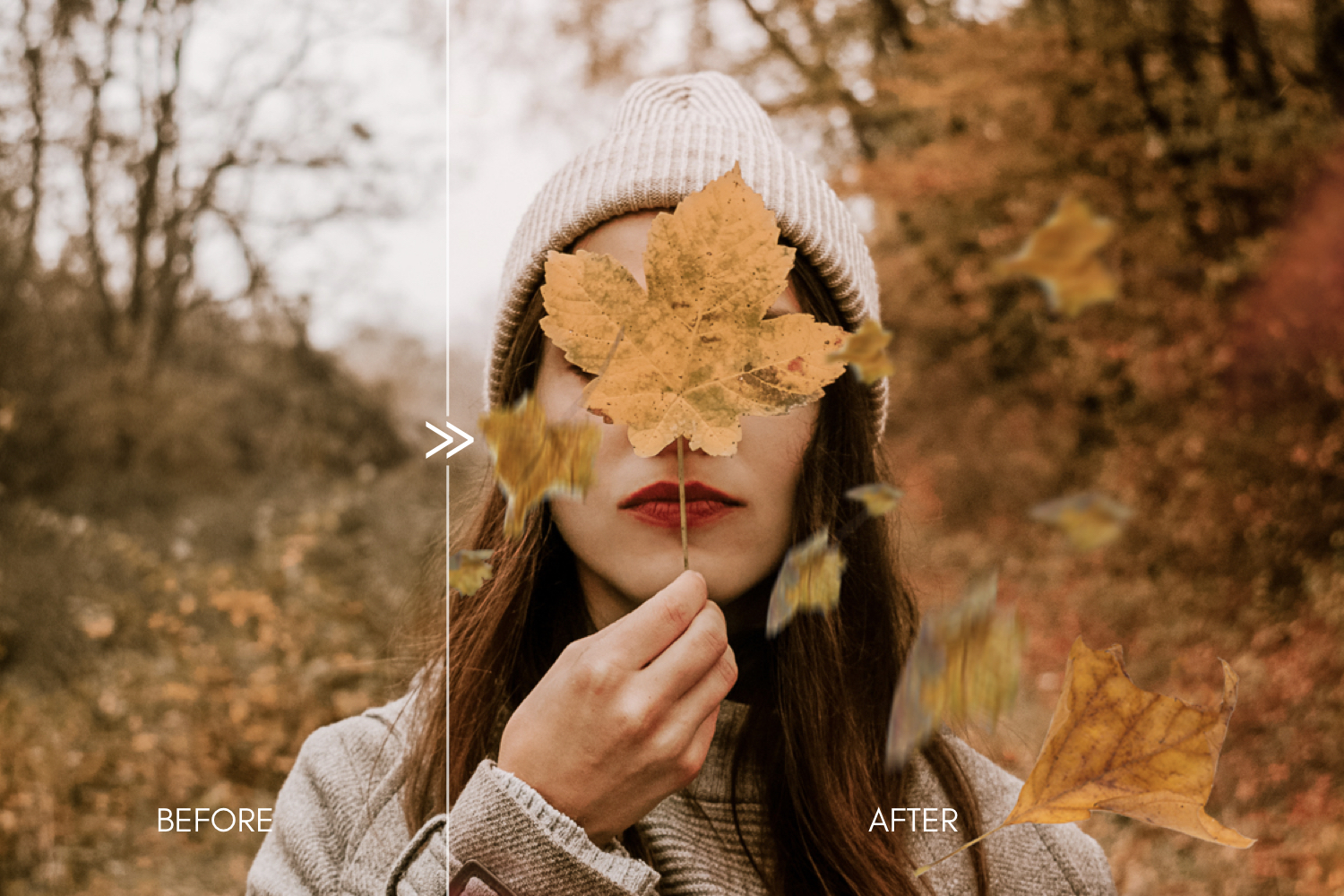 Falling leaves photoshop overlay Autumn clip art Digital photography prop Tree branches cut out Transparent background Photo backdrop