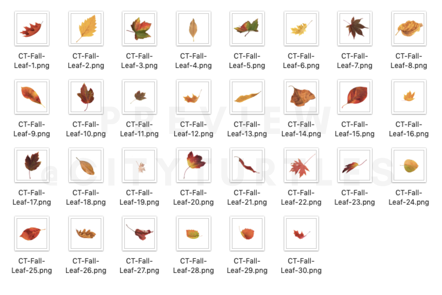 70 Natural Falling Autumn Leaves Photoshop Overlays - autumn falling leaves photoshop photography overlays 9 -