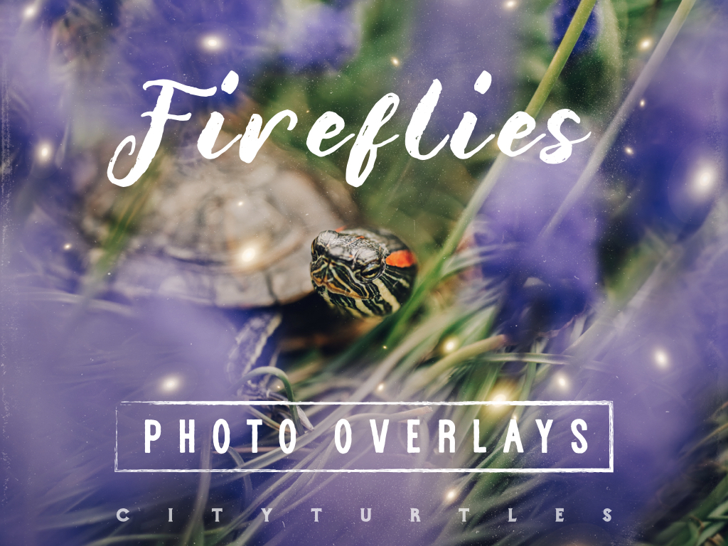30 Dreamy Firefly Photo Overlays for Photoshop and Mobile - firefly overlays -
