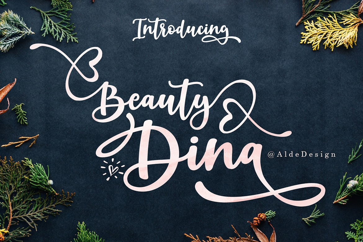 The 15 in 1 Wonderful Font Bundle - COVER Beauty Dina -
