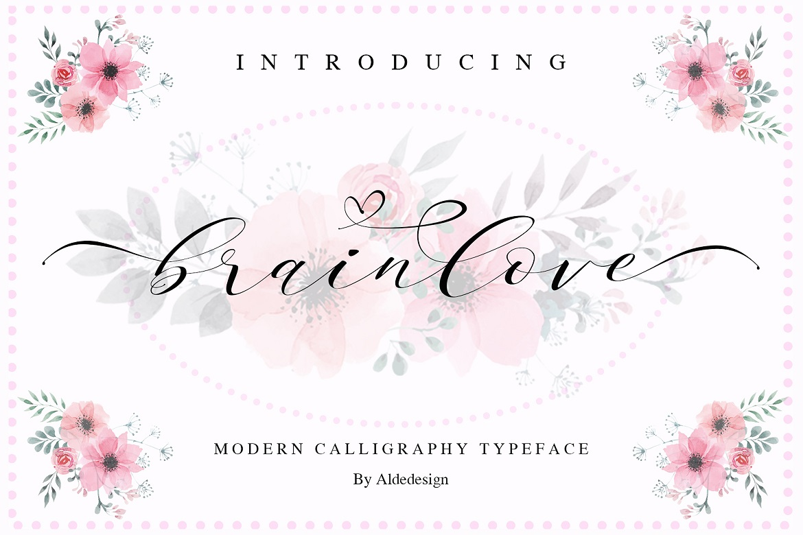 The 15 in 1 Wonderful Font Bundle - COVER Brainlove -