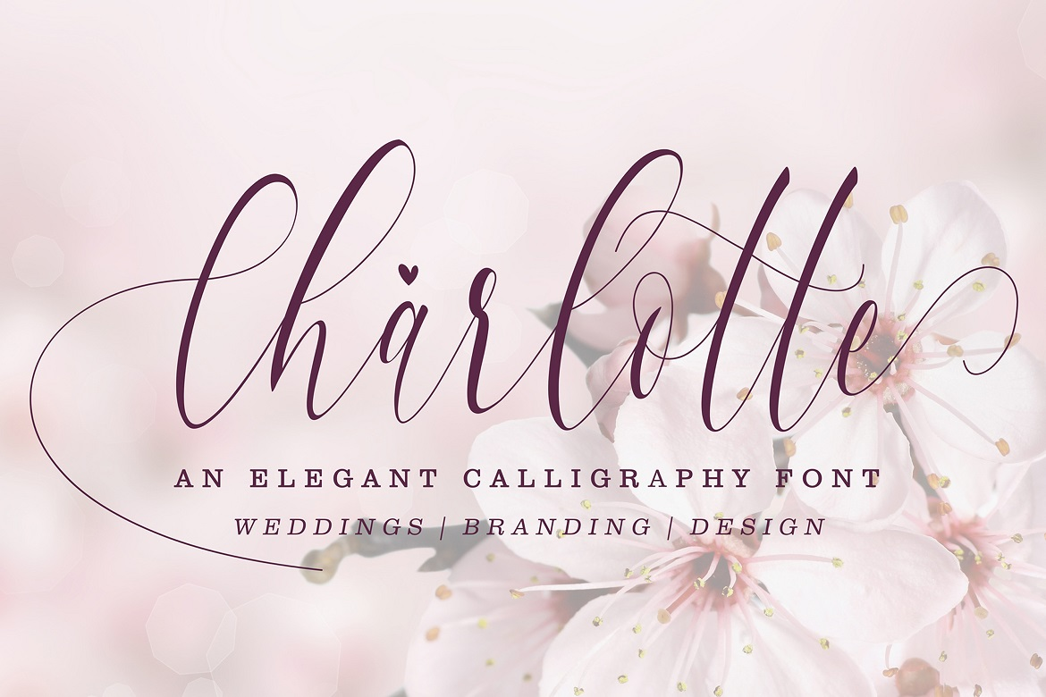 The 15 in 1 Wonderful Font Bundle - COVER Charlotte -