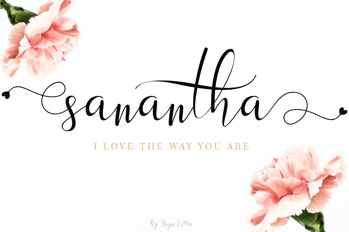 Beautiful Script Font Bundle - sanantha -