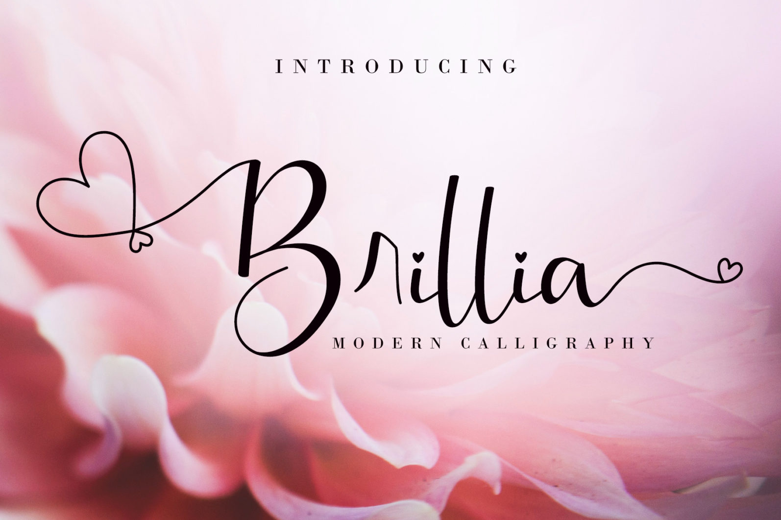 The 10 in 1 Lovely Script Bundle - Preview 5 60 -