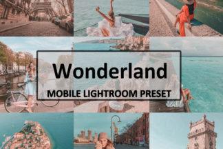 Spring Lightroom Presets - wonderland -
