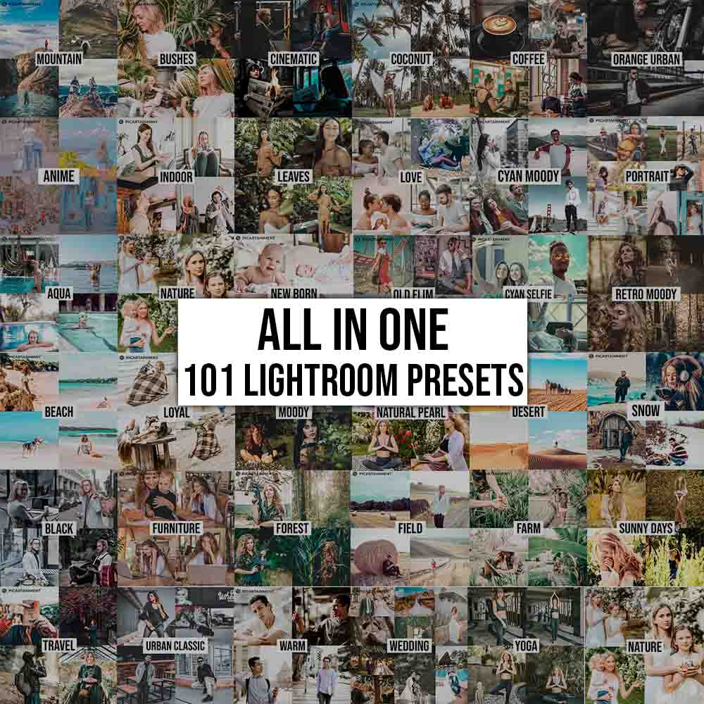 101 All in One Lightroom Presets Bundle - All in one Presets -