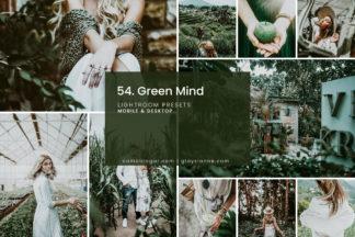 White Lightroom Presets - 54.GREEN MIND 01 -