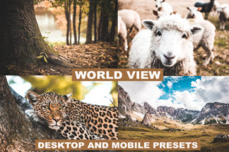 Professional Lightroom Presets - preview LUTS 1 8 -