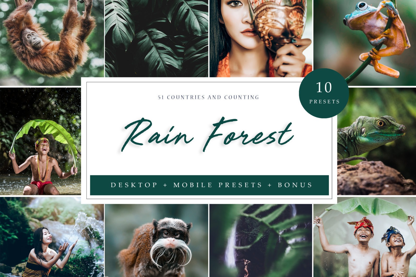 10 x Rain Forest Lightroom Presets | Green Lightroom Presets | Nature Presets - RainForest LR scaled -